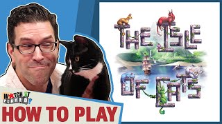 The Isle Of Cats  How To Play
