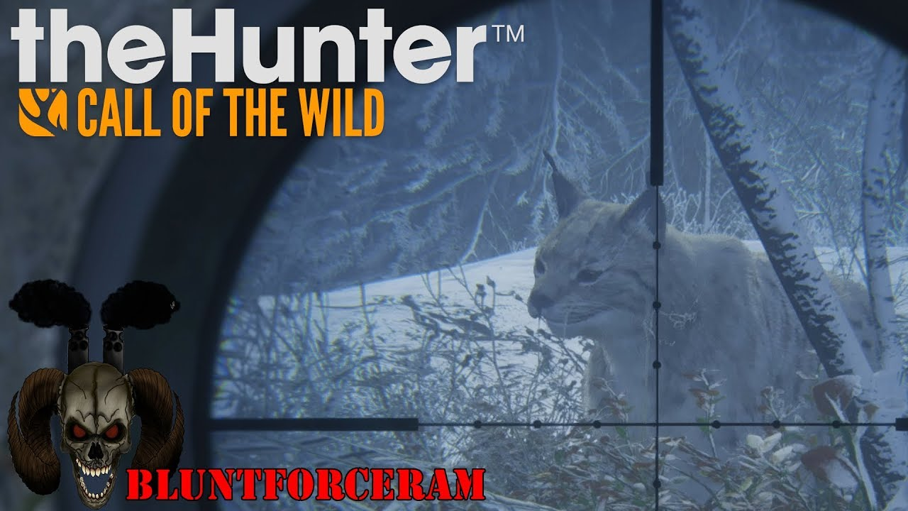 Download The Missing Lynx! Medved Taiga The Hunter Call of The Wild 4K