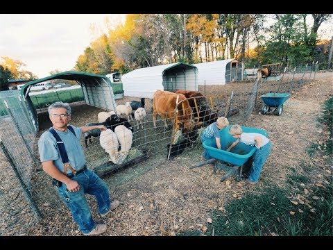 """The """"Not Enough Pasture"""" Livestock Solution"""
