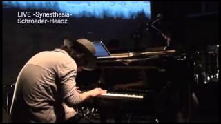 Schroeder-Headz - LIVE - Synesthesia - 【Trailer】