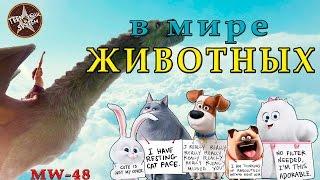 Тайная жизнь животных / Пит и его Дракон Обзор мультфильма
