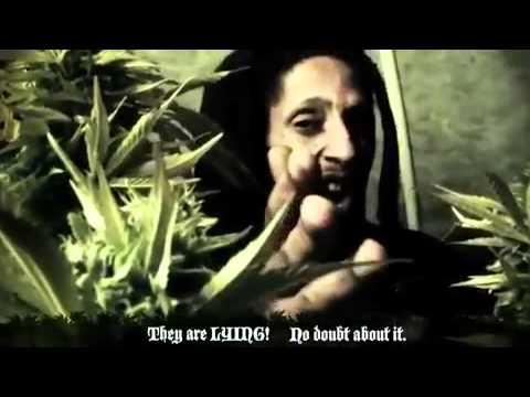 julian-marley-boom-draw-music-video-jamrockvybzreggae