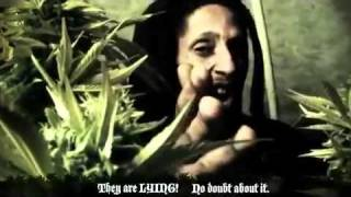 Julian Marley - Boom Draw (Music Video)(Julian Marley performing 'Boom Draw' Music Video. Julian @ http://jamrockvybz.com/profile/JulianMarley - Facebook @ http://on.fb.me/hTYVlh - Reggae News ..., 2011-12-23T21:29:50.000Z)