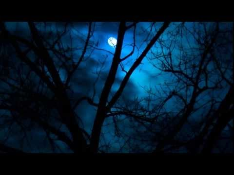 Ronan Hardiman - Celtic Dream