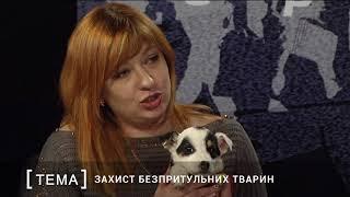 """Организация защиты животных """"Ковчег"""""""