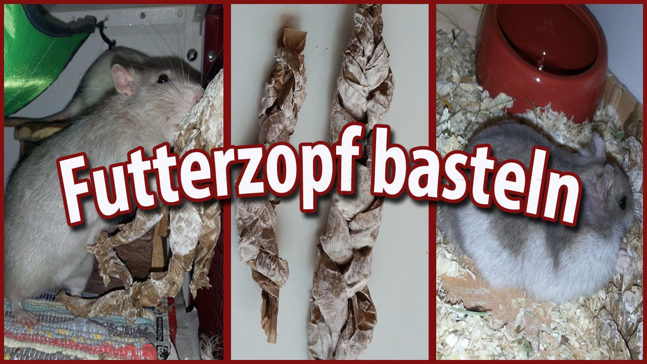 futterzopf f r ratten hamster und andere nagetiere diy youtube. Black Bedroom Furniture Sets. Home Design Ideas
