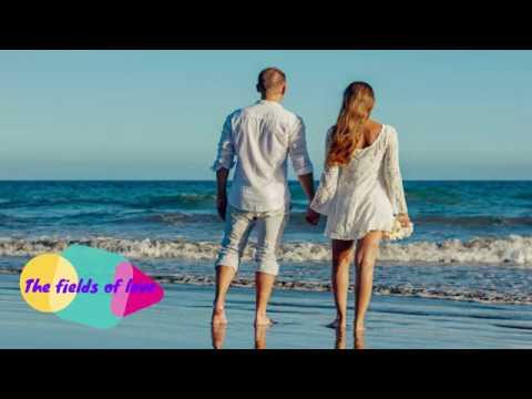 ATB Feat. York - The Fields Of Love (Lyrics)