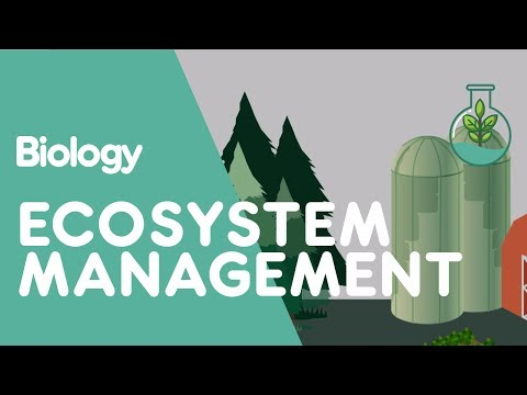 Ecosystem Management | Biology for All | FuseSchool