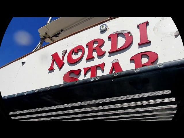 Nordic Star 08/02/19