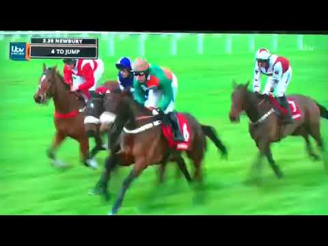 Lady Buttons Wins At Newbury December 2018