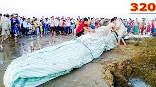 Phát HIện Sự Thật Kinh Hãi Trên Sông Tiền Được Người Dân Giấu Kín - Thế Giới Quỷ P1