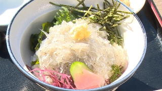 《冬冬与亮叔的私人假期》12 海鲜爱好者必看!究竟能不能吃到传说中的生小沙丁鱼盖饭? thumbnail