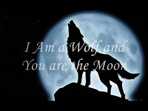I Am a Wolf and You Are the Moon (Craig Wedren and Isaac Carpenter)