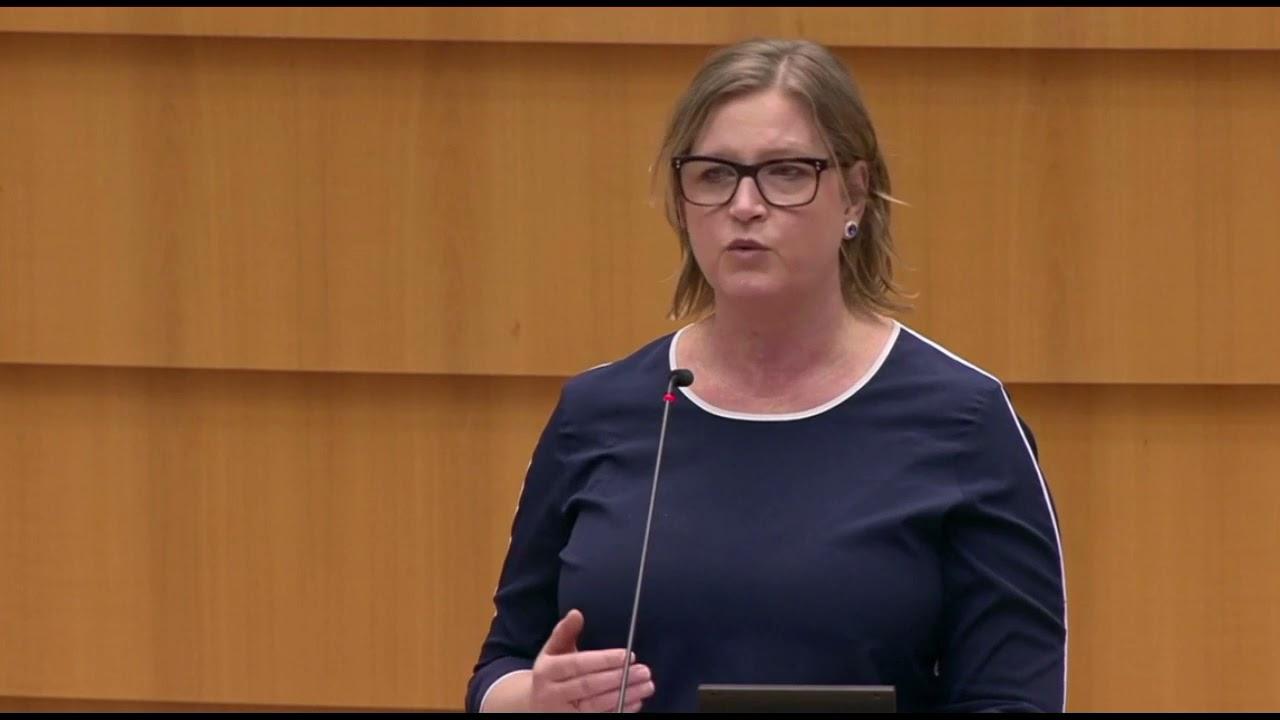 Karin Karlsbro 25 March 2021 plenary speech on control of exports