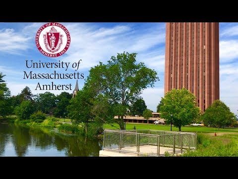 umass amherst campus tour + initial reaction
