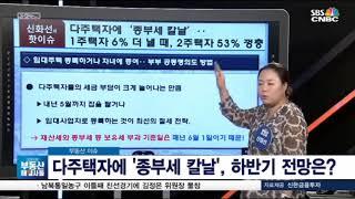 [SBS CNBC 부동산해결사들 신화선대표] 다주택자에 '종부세 칼날', 하반기 전망은?