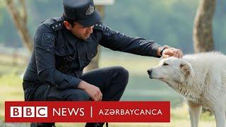 Azərbaycan polisi nüfuzuna əhəmiyyət verirmi?