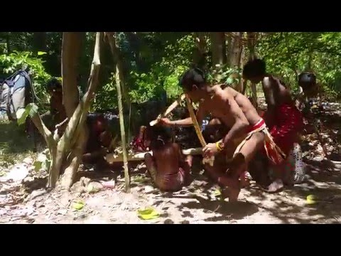 Traditional dance of Filipino Batak tribe, Palawan Island 20-03-2016