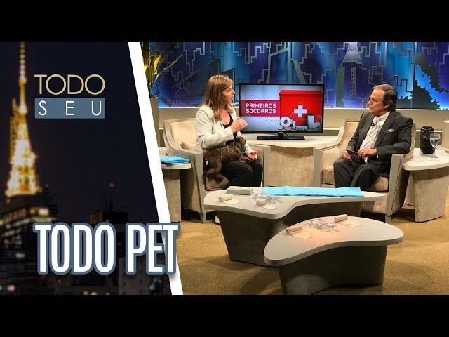 Veterinária Fernanda Fragata fala sobre primeiros socorros pet  - Todo Seu (09/07/18)