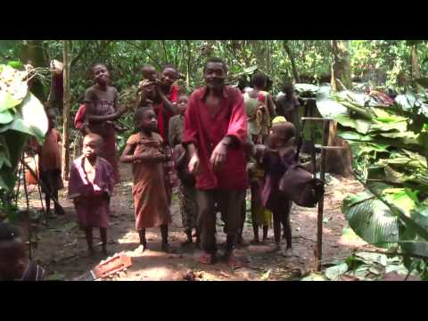 Baka Pygmy guitarists in the cameroon rainforest