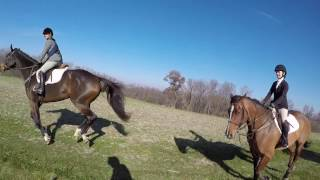 Foxhunting in Northern Illinois Fox River Valley & Massbach Hounds 1080p
