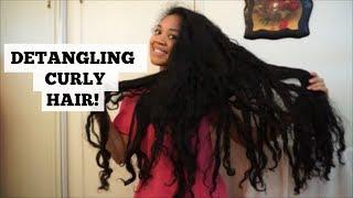 HOW TO: Detangle Long Curly Hair | My Detangle Routine