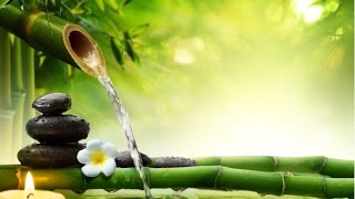 6 Hour Relaxing Spa Music: Massage Music, Meditation Music, Relaxation Music, Soothing Music ☯2145