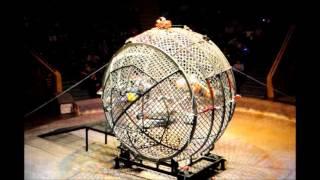 мото в шаре мотошоу экстрим шоу цирковое шоу(цирк каскадеры., 2013-01-16T19:08:11.000Z)