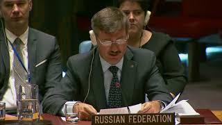 Выступление П.В.Ильичева в СБ ООН по Докладу Международного трибунала по бывшей Югославии