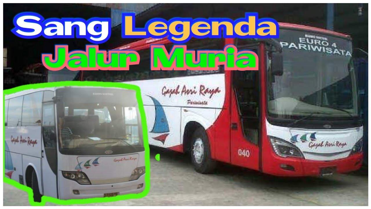 Masih Ingat Bus Ini Salah Satu Legend Di Jalur Muriaan Tempo