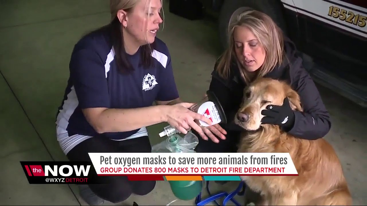 Public support leads to donation of more than 800 pet oxygen masks to DFD