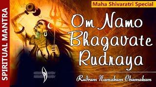 Om Namo Bhagavate Rudraya - Rudram Namakam Chamakam - LORD SHIVA BHAKTHI SONGS