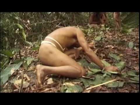Cмотреть онлайн дикии племена без регистрации и кодов