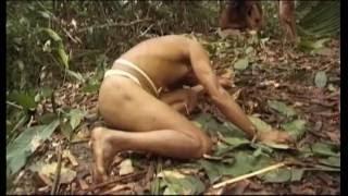 """""""В дебрях Амазонии. Часть 1."""""""