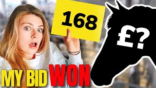 MEET MY NEW HORSE ~ And come to the auction