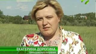 видео Волгоградские многодетные семьи получат землю в июле