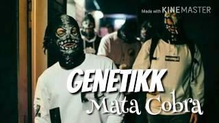 "📷 Genetikk - [""Mata Cobra""]"