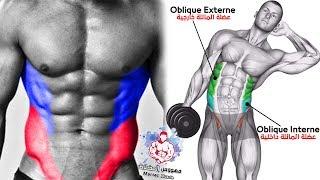 اقوى تمارين 6 تضخيم عضلة البطن الجانبية ( V Cut Abs Workout )