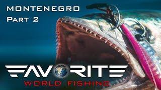 Favorite World Fishing Морская рыбалка в Черногории Джиггинг со скал и рокфишинг Часть 2