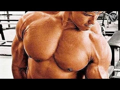 THE PUMP - GET IN THE ZONE - ARNOLD GYM MOTIVATION