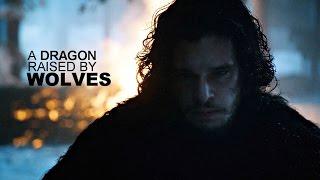 Jon Snow | A Dragon Raised By Wolves [GoT]