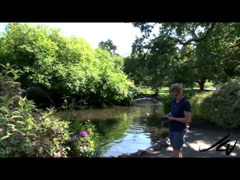Beacon Hill Park  - Victoria, British Columbia -  YouTube