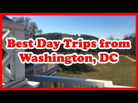5 Best Day Trips From Washington, DC | Love Is Vacation