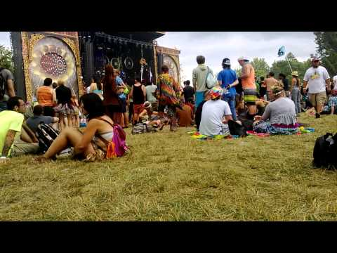 Some hippie band @ Electric Forest 2013
