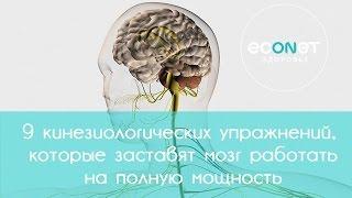 9 кинезиологических упражнений заставят мозг работать на полную мощность   Econet.ru