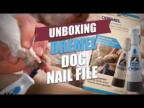 Dremel Dog Nail File Unboxing