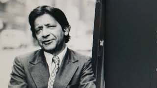 VS Naipaul ~ another perspective
