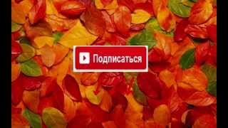 Универ Новая общага 82 серия 3 сезон