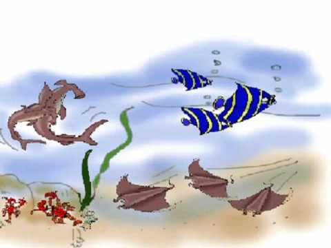 Pin by missd on setting for short story pinterest fish short story children 39 s short story book fish with a gold fish short story fandeluxe Choice Image