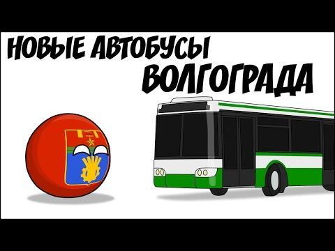 Новые автобусы Волгограда ( Countryballs )